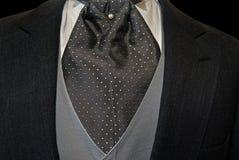 Elegant tuxedo with cravat. Silky cravat accenting a tuxedo Stock Images