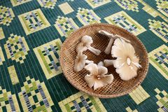 Silver sillago mushroom in a bamboo basket for cooking Thaifood Stock Photo