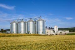 Silver silos in corn field Stock Photos