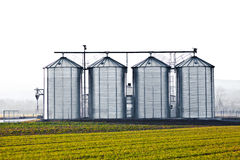 Silver silos in the field Stock Photo