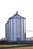 Silver silos in the field Royalty Free Stock Photos