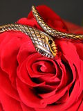 Silver snake and rose. Silver snake figure and blood red rose Stock Photography