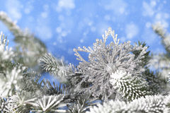 Silver Snowflake in Pine Branches Stock Image