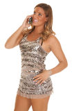 Silver sparkle dress phone Stock Photos