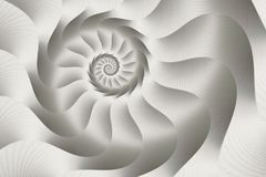 Silver spiral abstract vector illustration