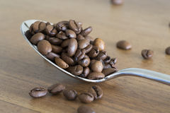 Silver spoon filled with coffee beans Stock Image