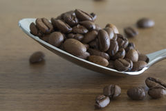 Silver spoon filled with coffee beans Stock Images