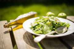 Silver Spoon With Green Leaves Vegetable on White Ceramic Plate Royalty Free Stock Photography