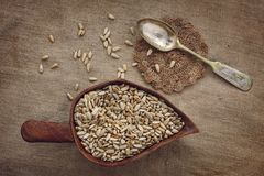 Silver spoon and sunflower seeds podslnuha on homespun fabric Stock Photography