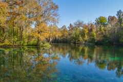 Silver Springs, Florida. Reflection of sky and trees at Silver Springs State Park in Florida Royalty Free Stock Image