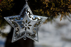 Silver Star Christmas Ornament Decorating an Outdoor Tree Royalty Free Stock Photo