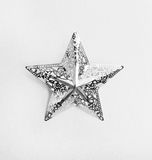 Silver star with ornament Stock Images