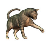 Silver Tabby  cat playing. 3d rendering  of a pedigree cat playing as  illustration Stock Images