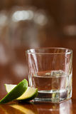 Silver tequila Royalty Free Stock Image