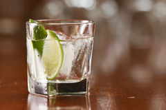 Silver tequila on the rocks Royalty Free Stock Photo