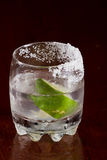 Silver tequila Stock Photography