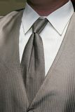 Silver Tie Royalty Free Stock Images