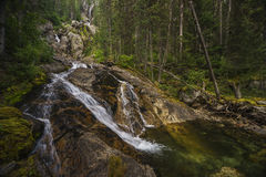 Silver Tip Falls, Wells Gray Provincial Park, North Thompson, ne Royalty Free Stock Photos