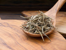 Silver tips white tea in the olive tree wooden spoon Stock Photography