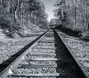 Silver tone vintage rail line  on Cape Cod. Silver tone effect on vintage rail line running through woods on Cape Cod Royalty Free Stock Photo