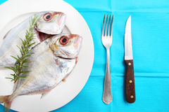 Silver Trevally Royalty Free Stock Photography
