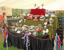 Silver Trophies Stock Images