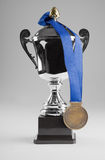 Silver trophy with medal. On blue ribbon Stock Images