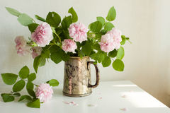 Silver vase wirh fresh pink roses, indoor, selective focus Royalty Free Stock Photo