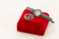 Silver watch Royalty Free Stock Images