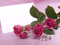 Silver wedding rings, card and roses stock photography