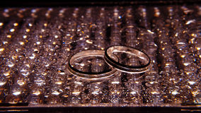 Silver wedding rings between drops. Macro, water object Royalty Free Stock Images