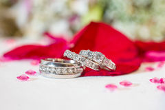 Silver wedding rings Royalty Free Stock Photos