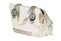 Silver white bag for dog Royalty Free Stock Image