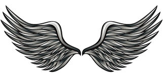 Silver wings. Royalty Free Stock Photography