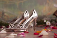 Silver womans shoes with petals Royalty Free Stock Photos