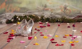 Silver womans shoes with roses petals Royalty Free Stock Photo