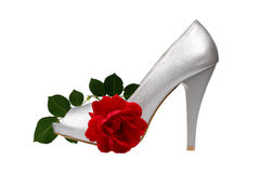 Silver women's heel shoe Royalty Free Stock Image