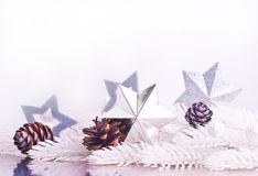 Silver xmas decoration with fur tree branch Stock Image