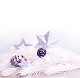 Silver xmas decoration with fur tree branch Royalty Free Stock Photo
