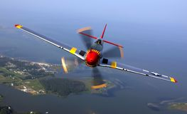 Silver Yellow Red and Black Jet Flying during Daytime Royalty Free Stock Photos