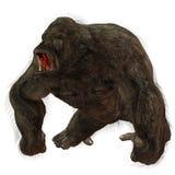 Silverback Gorilla Stock Photos