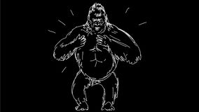 Silverback Gorilla Beating Chest Drawing 2D Animation stock video