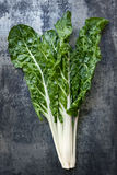 Silverbeet on Slate Overhead view Stock Photo
