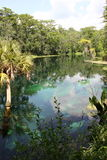 Silverflod Florida Royaltyfri Fotografi