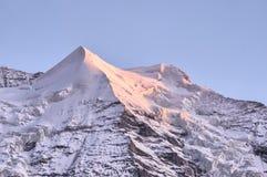Silverhorn kurz vor Sonnenuntergang Lizenzfreies Stockfoto