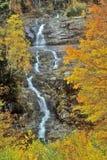 Silverkaskad, Crawford Notch, NH i de vita bergen i höst Royaltyfria Foton