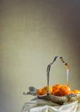 Silverkorg Royaltyfri Bild