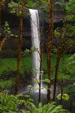 Silvernedgångar - Oregon vattenfall Arkivfoton