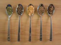 Silverskedar med olika kryddor arkivbilder