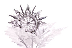 silversnowflake Arkivfoton